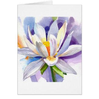 lilycloseup1 tarjeta de felicitación