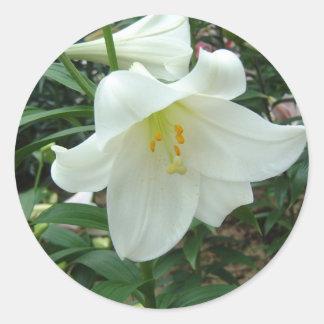 lilyeaster pegatina redonda