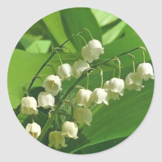lilyofthevalley classic round sticker