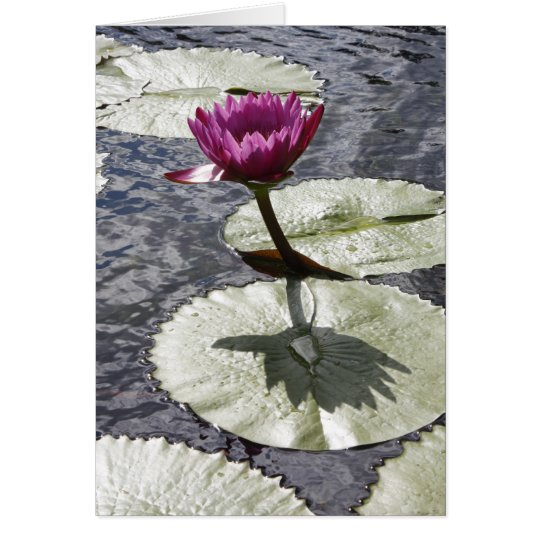 Lilypad and Flower Card