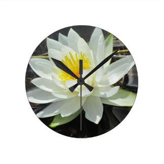 Lilypad bloom clock
