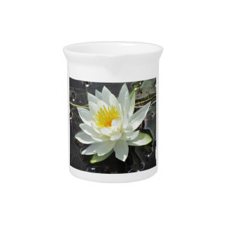 Lilypad bloom pitcher