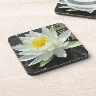 Lilypad Cork Coasters