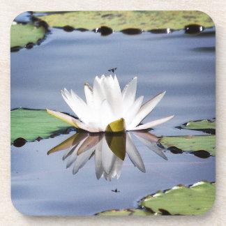 lilypad flower coaster