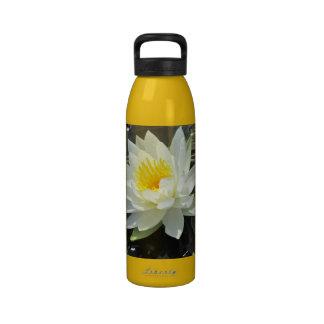 Lilypad flower reusable water bottle