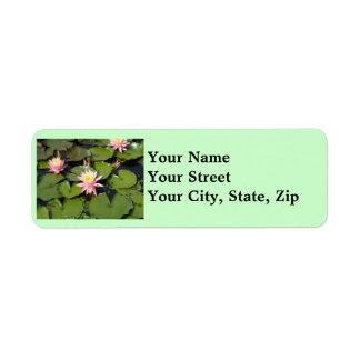 Lilypad Flowers Return Address Labels