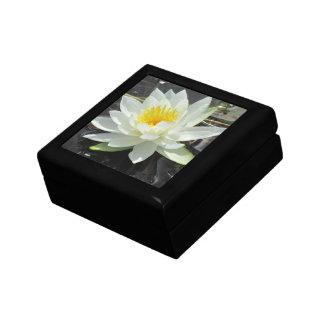 Lilypad giftbox jewelry boxes