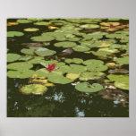 Lilypad # impresión del arte del impresionismo 3 poster