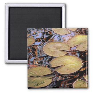 Lilypad 2 Inch Square Magnet