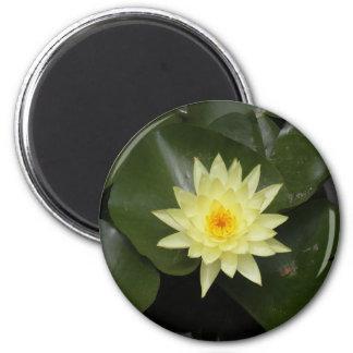 Lilypad 2 Inch Round Magnet