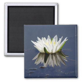 Lilypad reflected in the water 2 inch square magnet