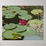 Lilypads #1 Impressionism Art Print