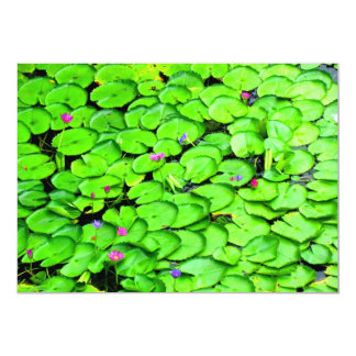 Lilypads in the River Photograph Card