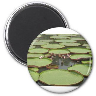 Lilypads 2 Inch Round Magnet