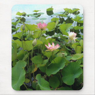 Lilypads on a pond Mousepad