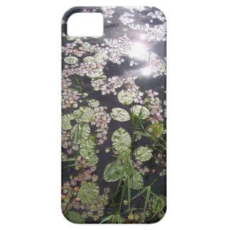 Lilypads on Sunlit Lake Photograph iPhone SE/5/5s Case