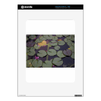 Lilypads iPad Skins