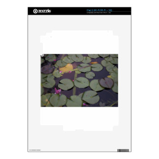 Lilypads Skin For The iPad 2