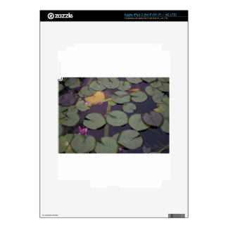 Lilypads Decals For iPad 3