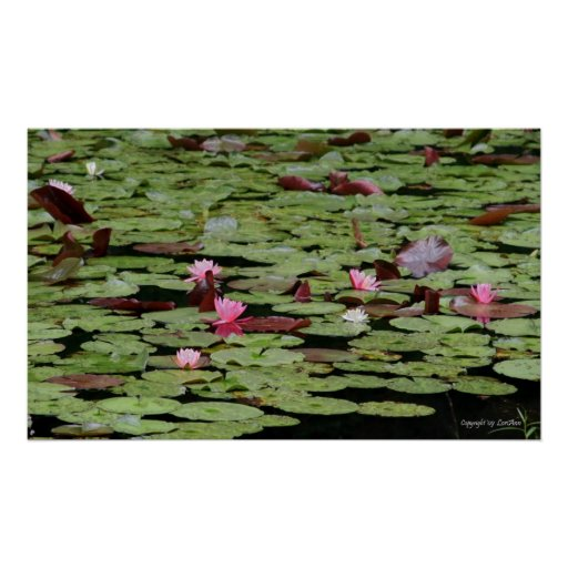 LilyPond Posters