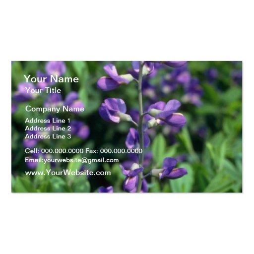 Lime Blue False Indigo, (Baptisia Australis) flowe Business Card Templates