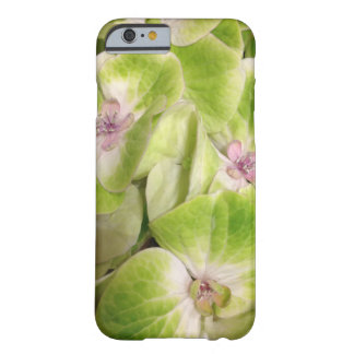 Lime Green Hydrangea Floral Barely There iPhone 6 Case