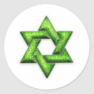 Lime Green Star of David Classic Round Sticker