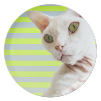 Lime Green Stripe White Devon Rex Cat Plate