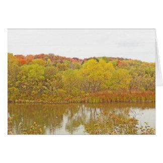 LIME-GREEN TREES ALONG LAKESHORE CARD