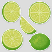 Lime Icon Set Stickers