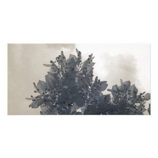 Lime leaves/Infrared Photography Photo Card
