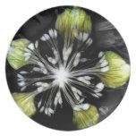 Lime Light Party Plate