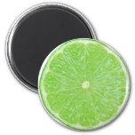 Lime Magnet