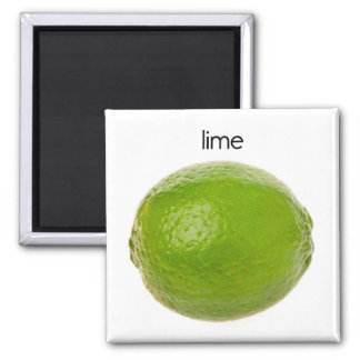 Lime Refrigerator Magnet