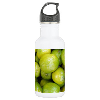 Lime Time 18oz Water Bottle