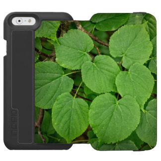Lime tree leaves iPhone 6/6s wallet case