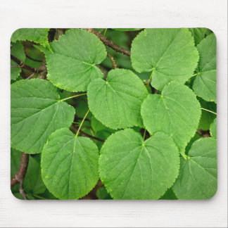 Lime tree leaves mouse pad