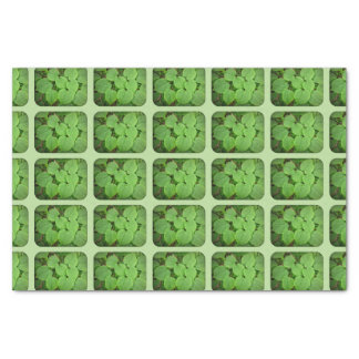 Lime tree leaves tissue paper