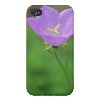 Lime Tussock Belleflower, (Campanula Carpatica) fl Case For iPhone 4