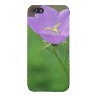 Lime Tussock Belleflower, (Campanula Carpatica) fl Covers For iPhone 5