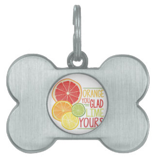 Lime Yours Pet Tag