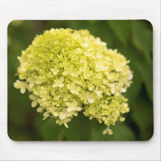 Limelight Hydrangea Mouse Pad
