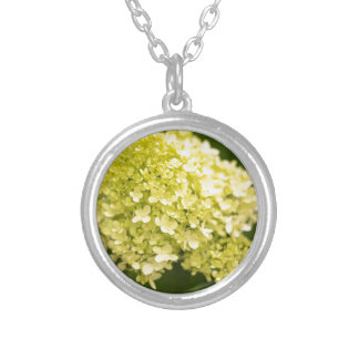 Limelight Hydrangea Silver Plated Necklace