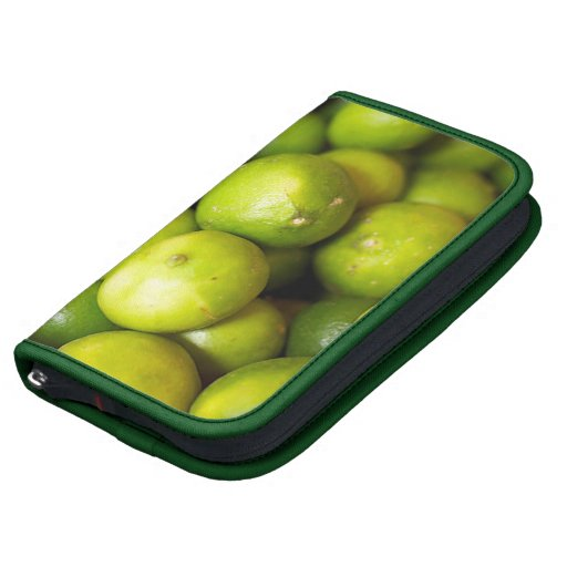 Limes Folio Case Planners
