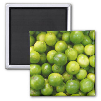 Limes Magnet 01