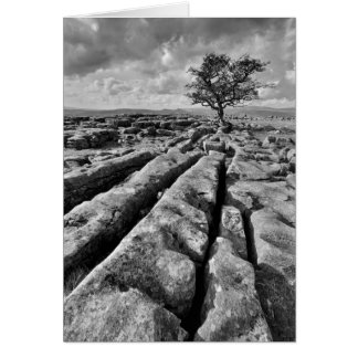 Limestone Country - The Yorkshire Dales Greeting Card