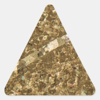 Limestone under the microscope triangle sticker