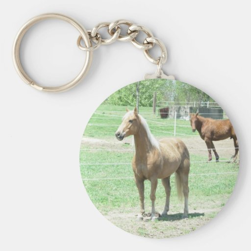 Limited and Jose Key Chains
