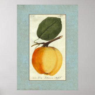 Limón Apple - impresión de la antigüedad de Der Póster