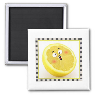 limón imanes para frigoríficos